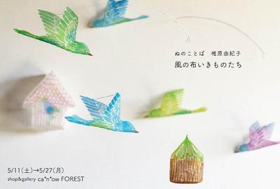 風の布-DMout.jpg